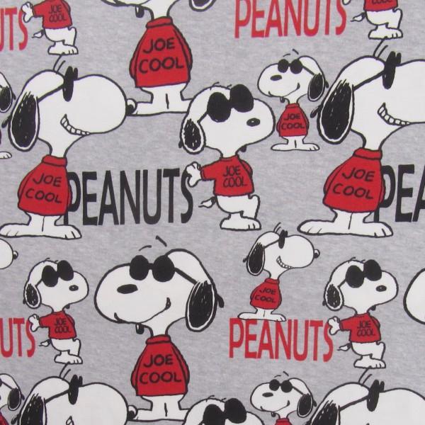 Biojersey Snoopy Peanuts Joe Cool Hellgrau meliert