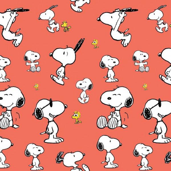 Biojersey Snoopy Peanuts Jump Aprikose