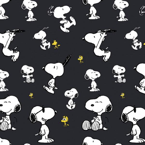 Biojersey Snoopy Peanuts Jump Schwarz Dunkelgrau