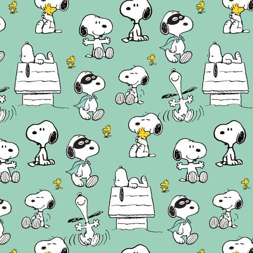Biojersey Snoopy Peanuts Maske Mintgrün