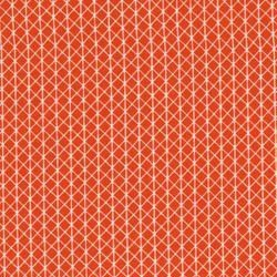 Cotton+Steel Linien Orange Weiß Patchworkstoff