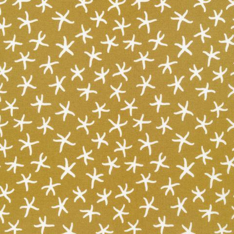 Underwater - Starfish