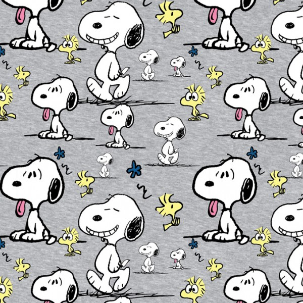 Biojersey Snoopy Peanuts Faces Hellgrau Meliert